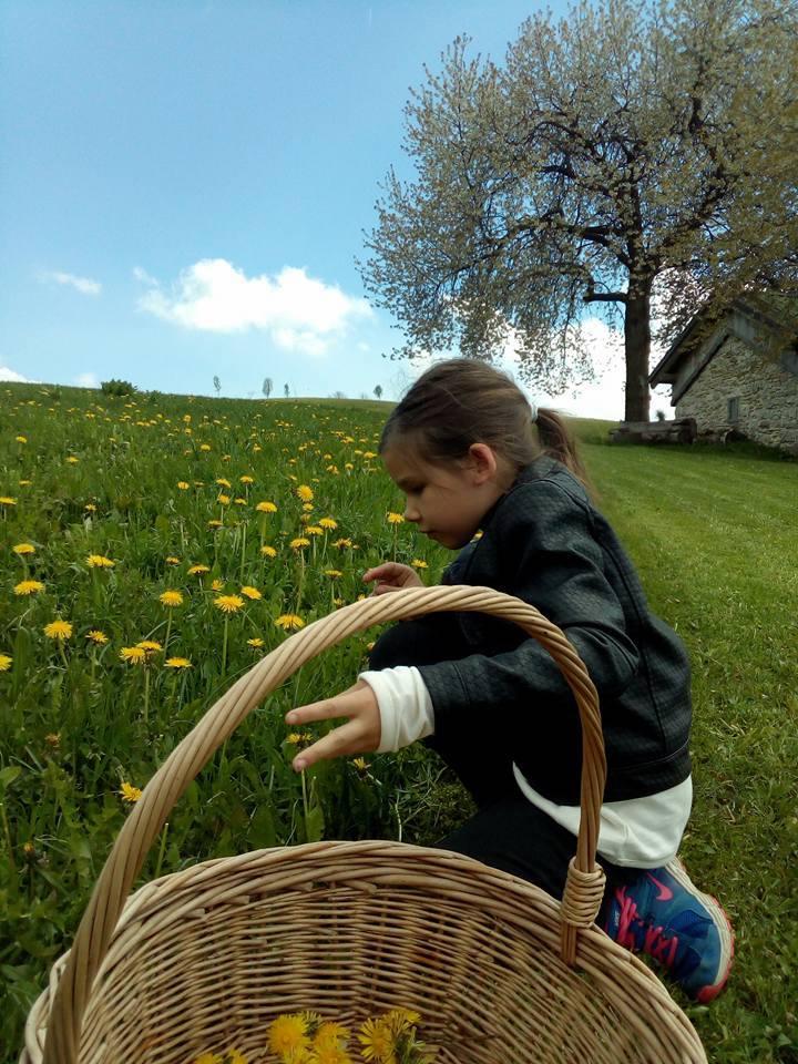 bambina raccoglie fiori al cason delle meraviglie